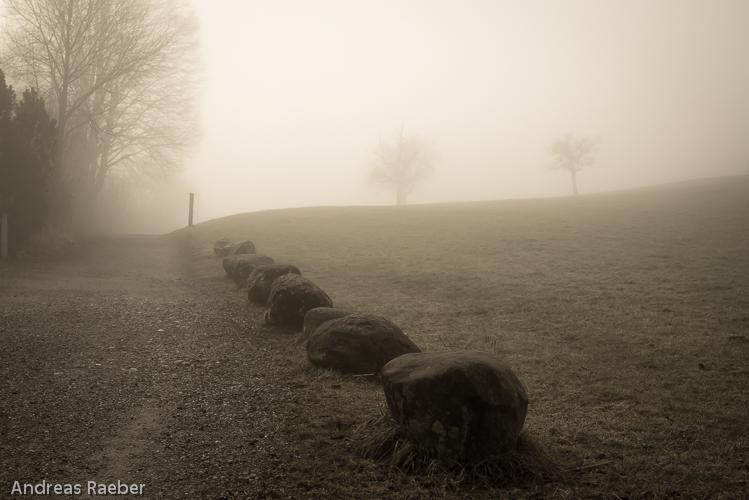 Herausforderung Nebel